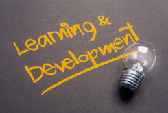 Learning and development opportunities