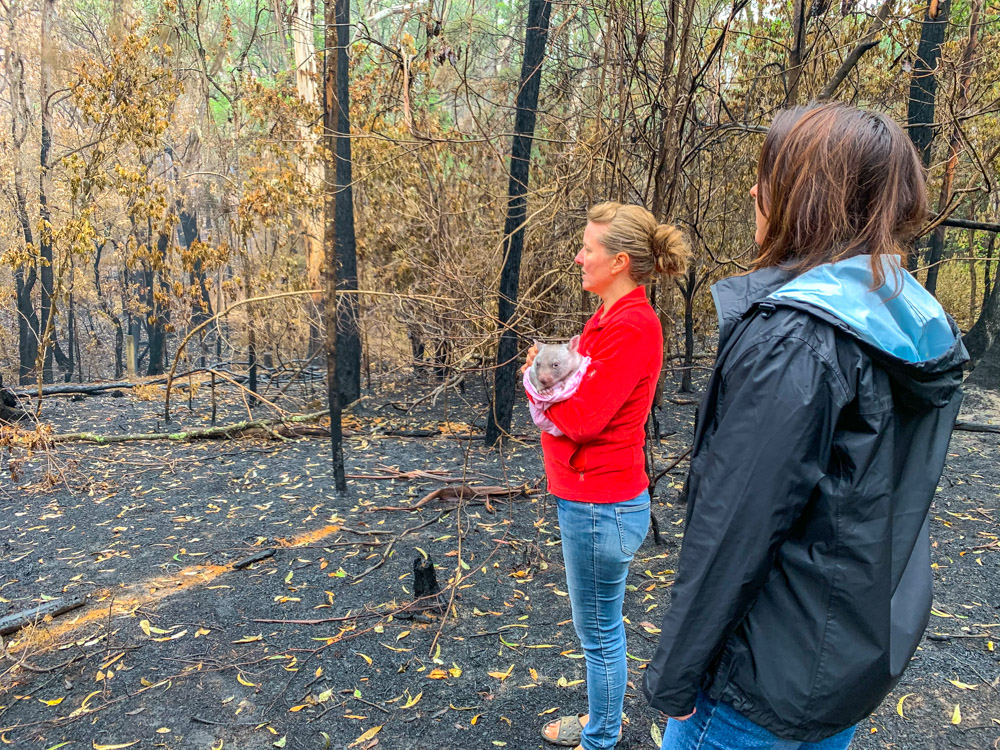 Staff look at destroyed bush area in the Southern Highlands